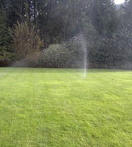 Namakalni sistemi RAIN BIRD